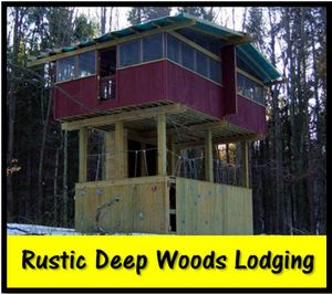 Deep woods lodging