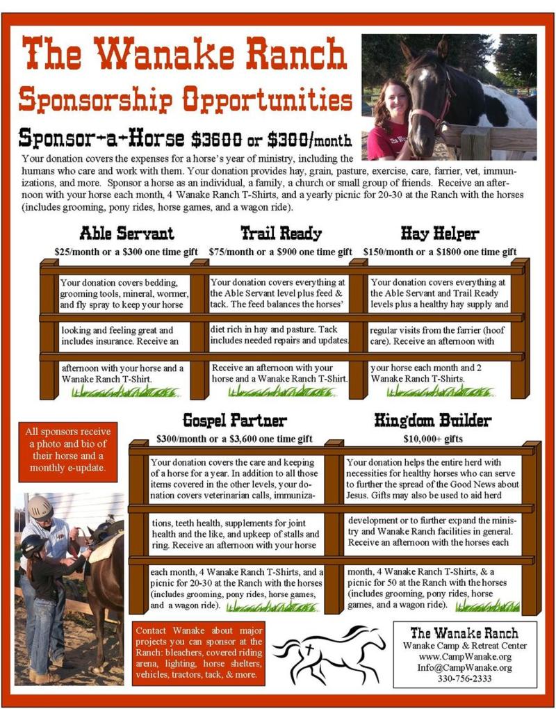 Sponsor a Horse Brochure2