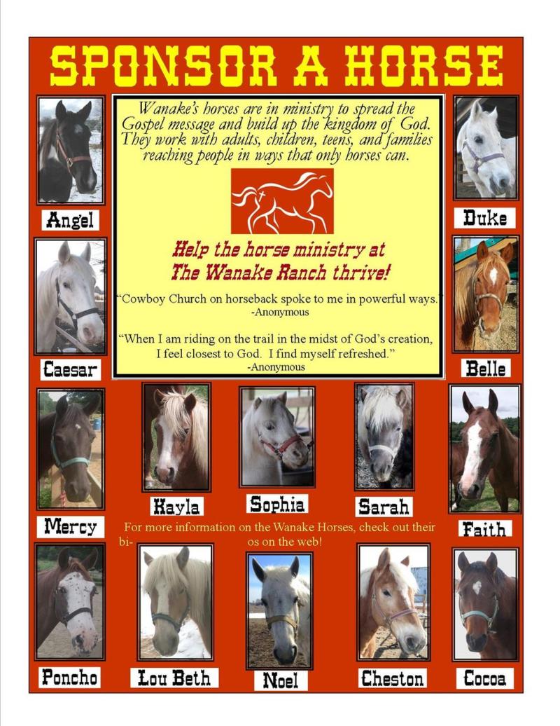 Sponsor a Horse Brochure